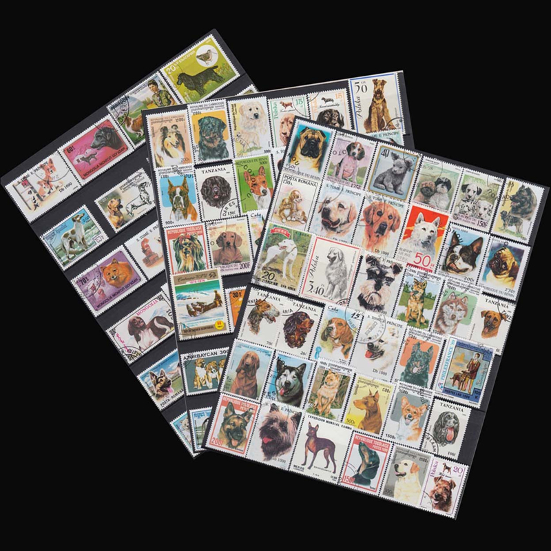 Dogs, 50 PCS/LOT , All Different  From Mang Countries, NO repeat , Uesed Postage Stamps For Collecting 4pcs chinese acient tower postage stamps unused new no repeat non postmark published in china best stamps collecting