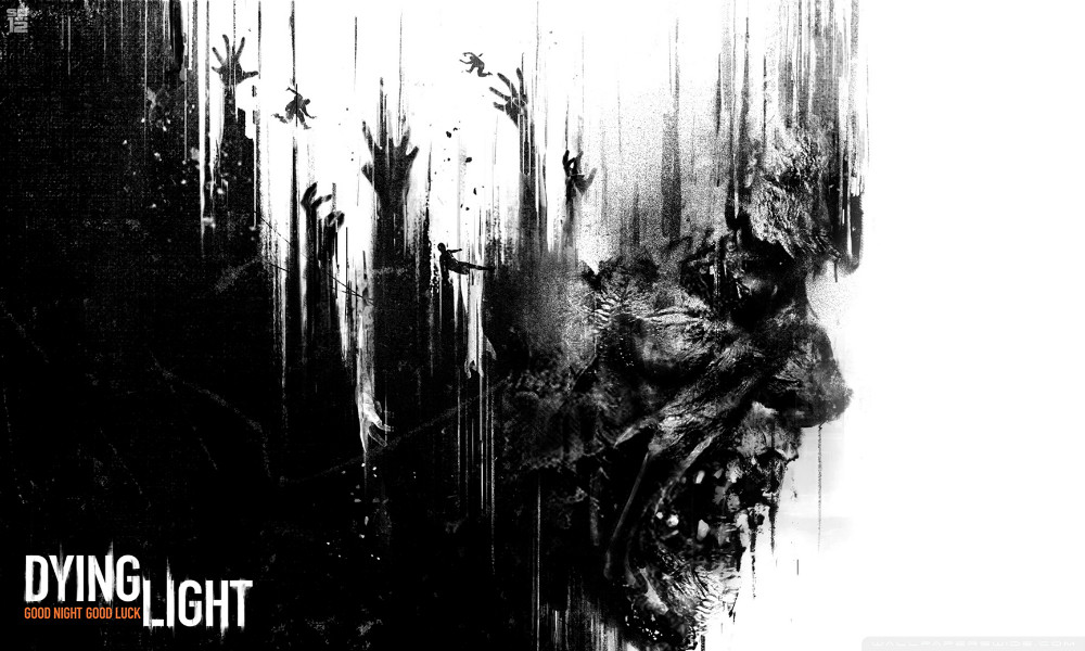 "Dying Light - Open World Survival Horror Game Fabric poster 40"" x 24""  21"" x 13 Decor-04"