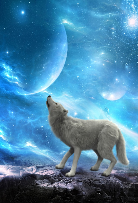 Laeacco Dreamlike Wolf Moon Nebula Photography Backgrounds