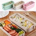 750ml Material saludable 2 capas caja de almuerzo de paja de trigo cajas de Bento de microondas vajilla de almacenamiento de alimentos caja de almuerzo
