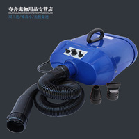Large dog Golden hair Pet only Dog Double motor High Power Water blowing machine anion dryer hair blow dryer 210 240V