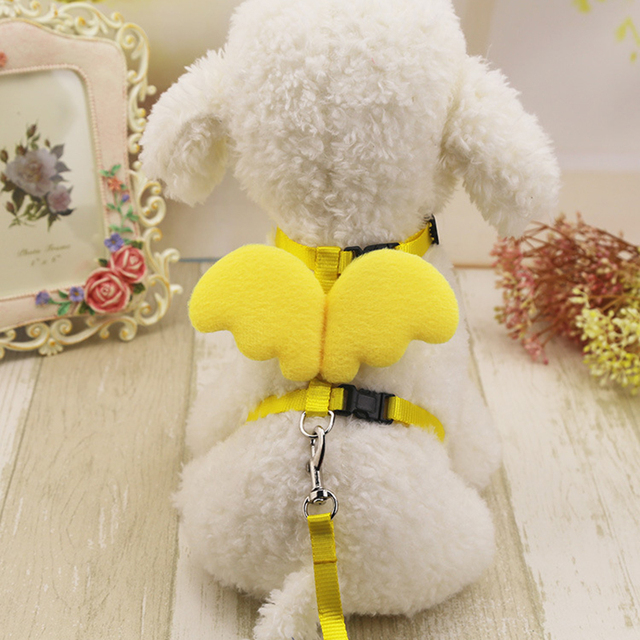 Angel Wing Vest Safety Harness Pet Leashes Adjustable Chest Formula Dog Rope Puppy Cat Collar And Leads Pets Chest Strap Leash