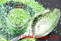 TCR10 Americano Fantasía polvo del brillo del color Iridiscente Verde Claro Punto Redondo Forma para uñas de Arte u otros DIY decoración