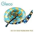 5M DC12V 5050 RGBW LED flexible strip 60LED/M,LED Strip 5050 RGBW RGBWW LED Tape IP20 No Waterproof