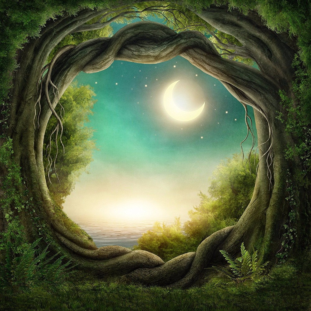Jungle Party Fairy Tale Backdrop Photography Forest Tree Trunk Arched Door Green Grass Moon Stars Wedding Photo Booth Background send rolled enchanted forest backdrop secret garden lantern fairy tale printed fabric photography background s0038