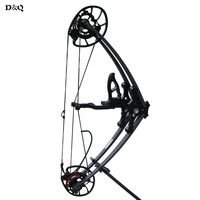 Archery Compound Bow 35 65lbs Draw Weight for Adult Hunter Archer Outdoor Hunting Target Shooting Aluminum Alloy Sport Game Bow