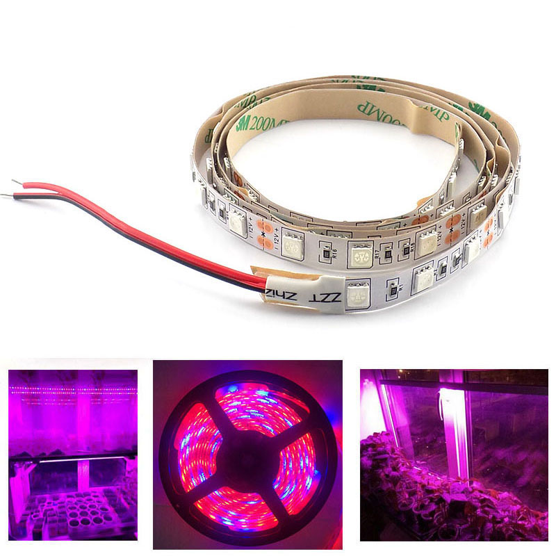 1M 2M 3M LED Plant Grow Strip Light 5050 Chip Lamp Waterproof DC 12V For Vegetable Flower Hydro Indoor Greenhouse Growbox Tent