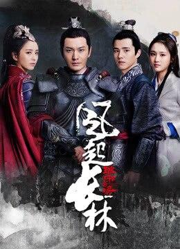 《琅琊榜之风起长林》2017年中国大陆剧情,古装电视剧在线观看