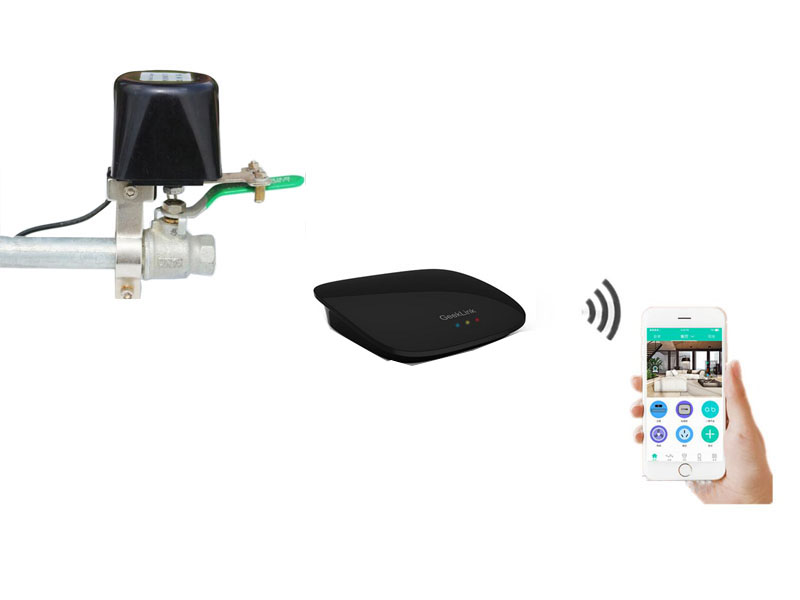Wireless Water Valve Radiator Valce For Remote Control Water Valve With Remote 3S App Control By Smartphone