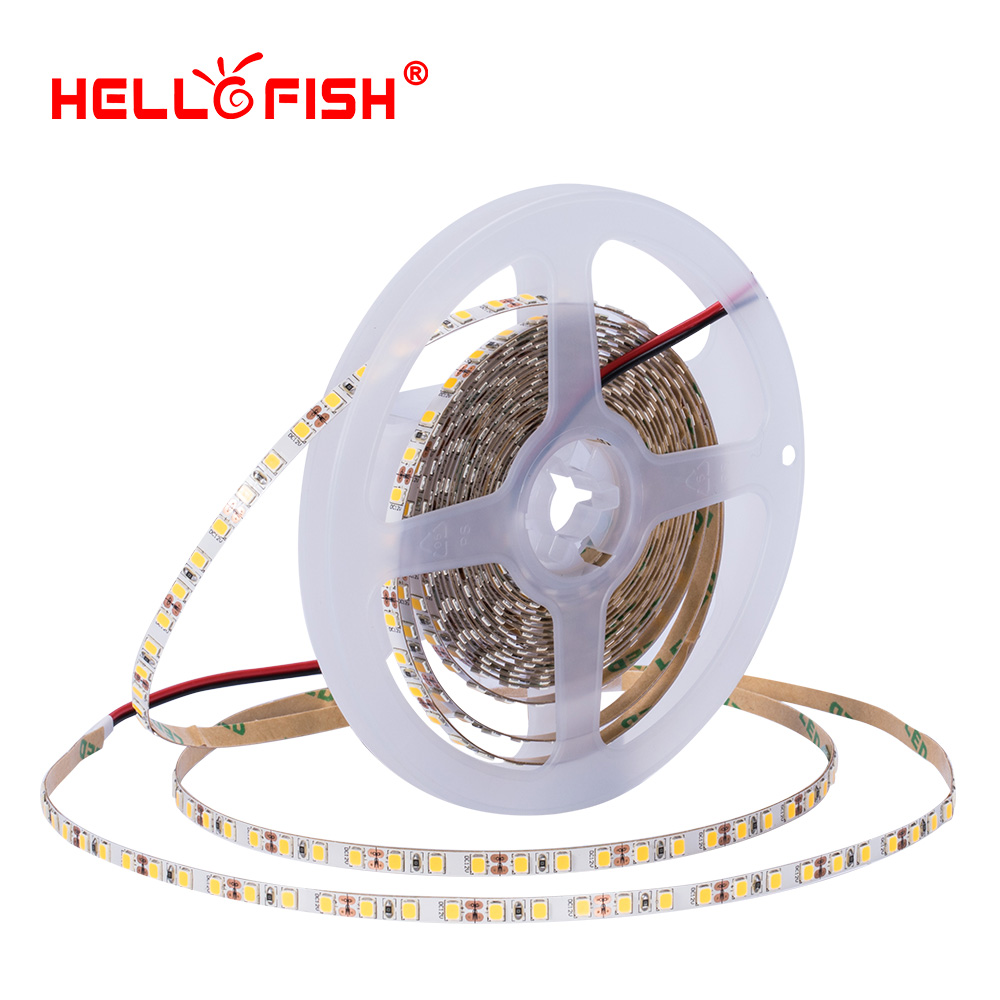 High Brightness CRI 90 5mm 2835 Led Diode Strip Light DC 12V Flexible Light Stripe 5m 600 LED Tape Lights & Lighting Hello Fish