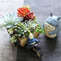 Kawaii Cartoon Cute Adorable Creative Chinchilla Bike Design Flower Pot Succulent Planter Desk Decor
