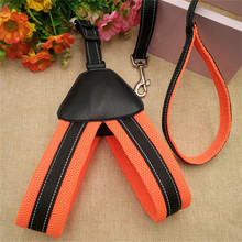 Dogs Collars Leash