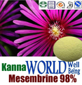 Kanna extrato Natural puro/Mesembrina 98%/extrato de Sceletium tortuosum/Mesembryanthemum 10:1