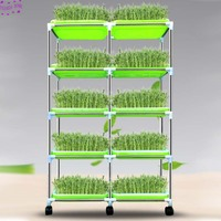 NEW 1 set Soilless Cultivation Support Shelf Seedlings Sprout Tray Bracket Hydroponic Bean Vegetable Garden Nursery Pot Support