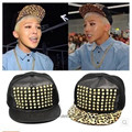 Южнокорейская звезда с деньгами прямо Zhilong золотой леопард меховая шапка заклепки ногтей открытый хип-хоп шляпа gorras шляпы snapback