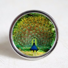 Peacock knobs / Dresser Crystal Knobs Kitchen Cabinet Furniture Handle Pull Bling Hardware Silver Clear