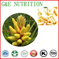 Конкурентоспособная цена и хорошее качество Сосновой Пыльцы Капсула 500 мг * 300 шт.
