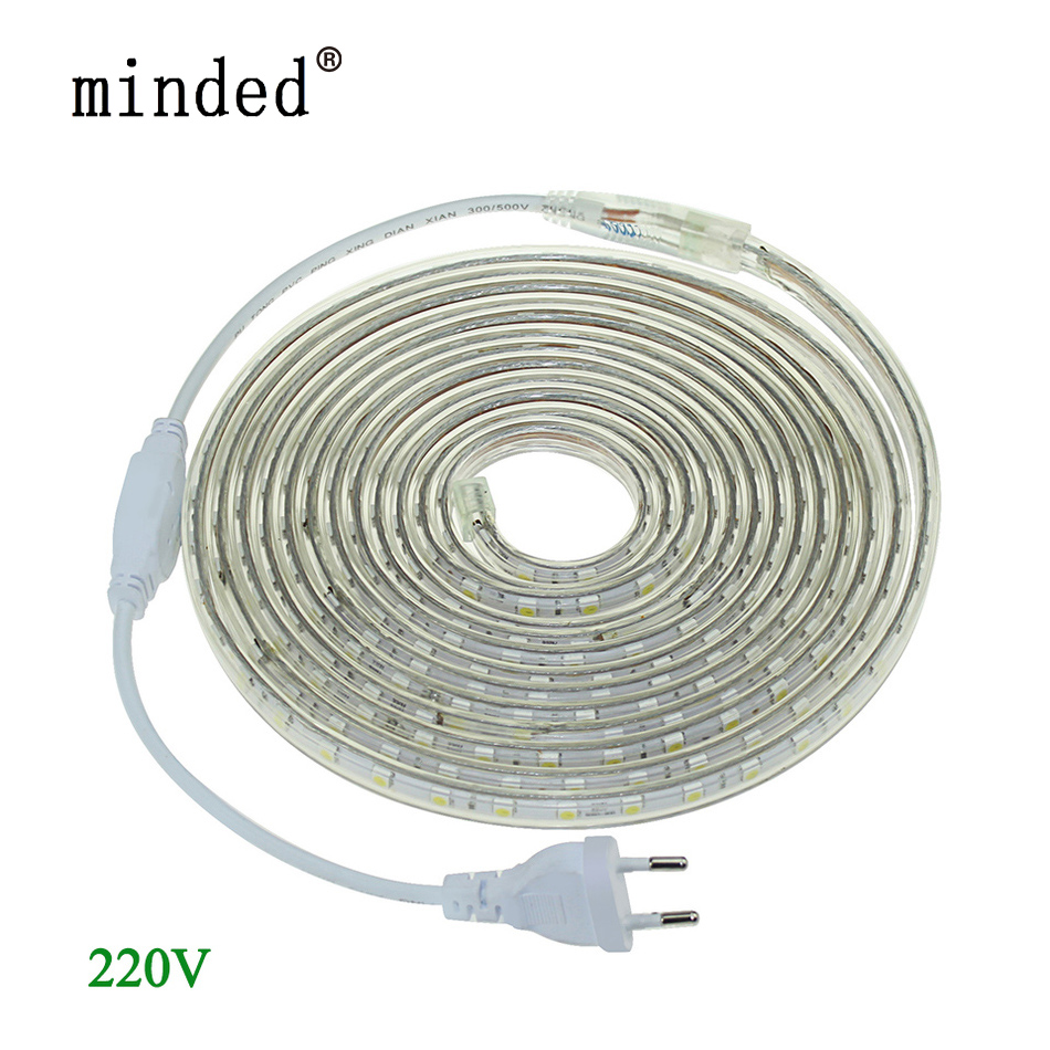 LED Strip Ligh 5050 220V Vattentät Ledband Flexibelt Strip 60 Leds / Meter Utomhus Garden Lighting med EU-kontakt 1M / 2M / 5M / 10M / 20