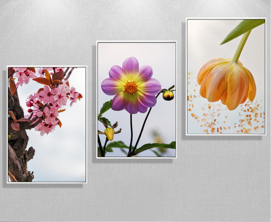 New Chinese peach 3 pieces flower paintings decoration for the head of the bed canvas paintings wall art without frame
