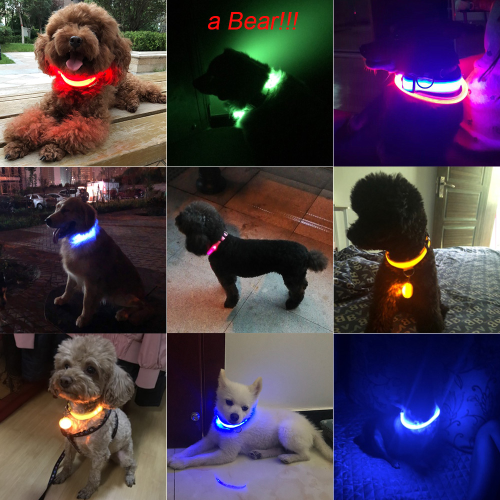 Glowing LED Dog Collar Anti-Lost Nylon Light Collar For Dogs 1