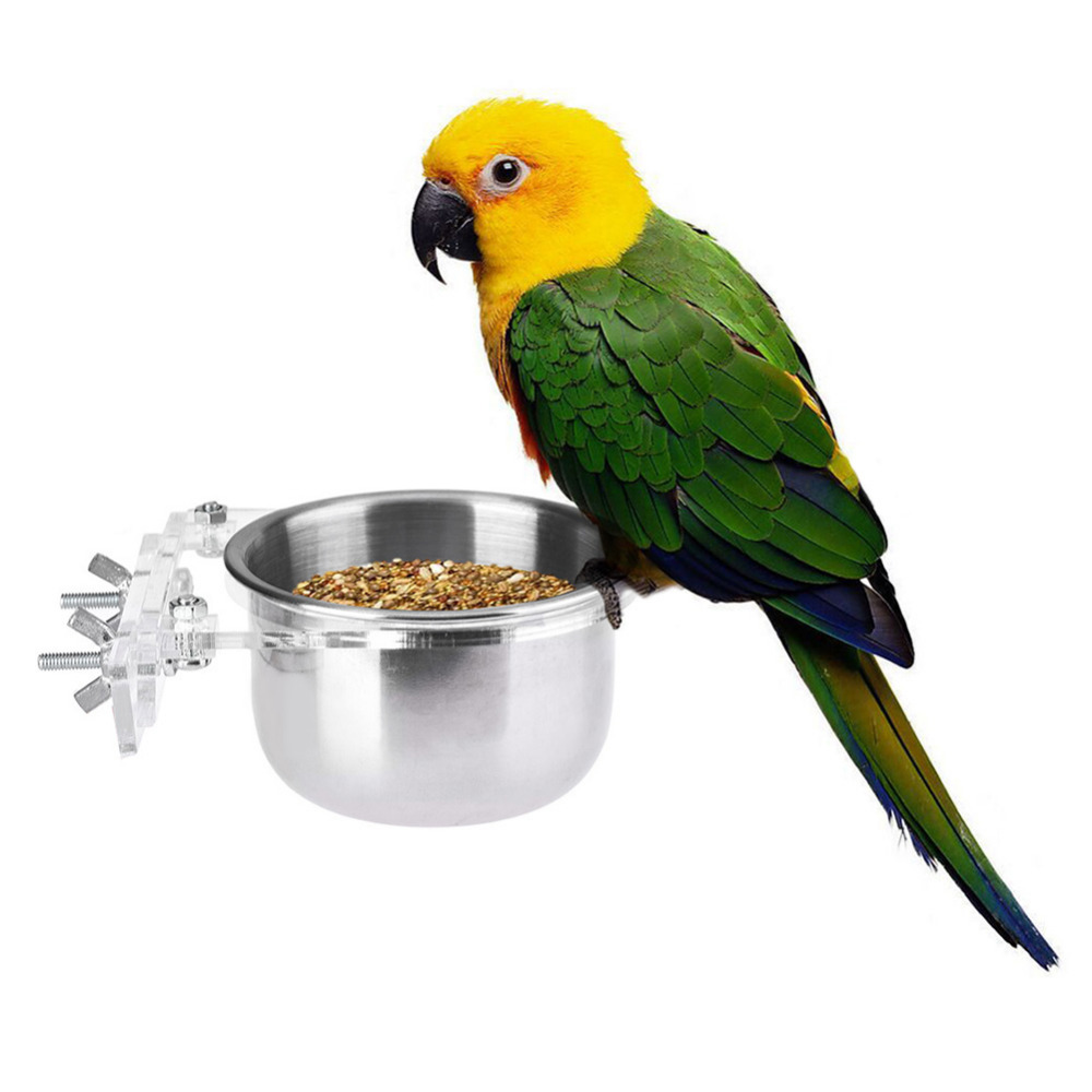 Online buy wholesale parrot bird food from china parrot for Bird food holder