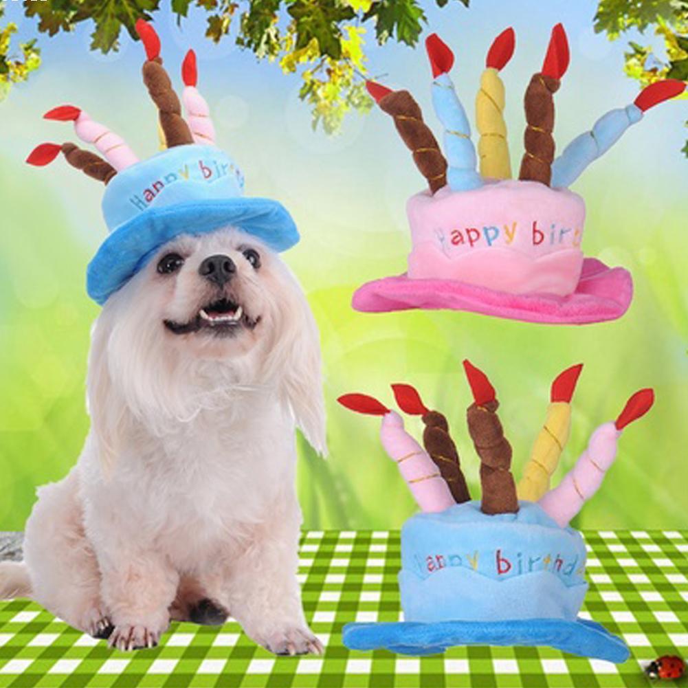 chapeau anniversaire chien