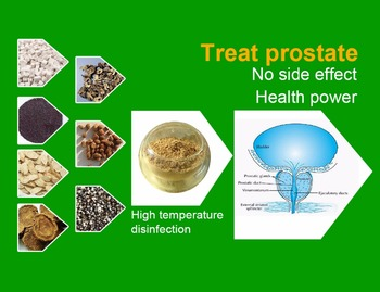 Anti Prostatitis Power Extracted from All Natural Medical Herbs, Cure Prostatitis Caused by Infection, Overuse of Prostate etc.