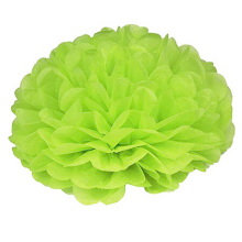 HGHO-15pcs Wedding flower ball 25cm Tissue Paper Wedding Party Decor Craft Paper Flower For Wedding Decoration Apple green