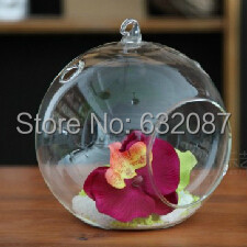 Diameter = 12cm Glass Globe Vase Home Decoration Hanging Glass Terrarium Wedding Decorative Props Beautiful Friend Glass Gift