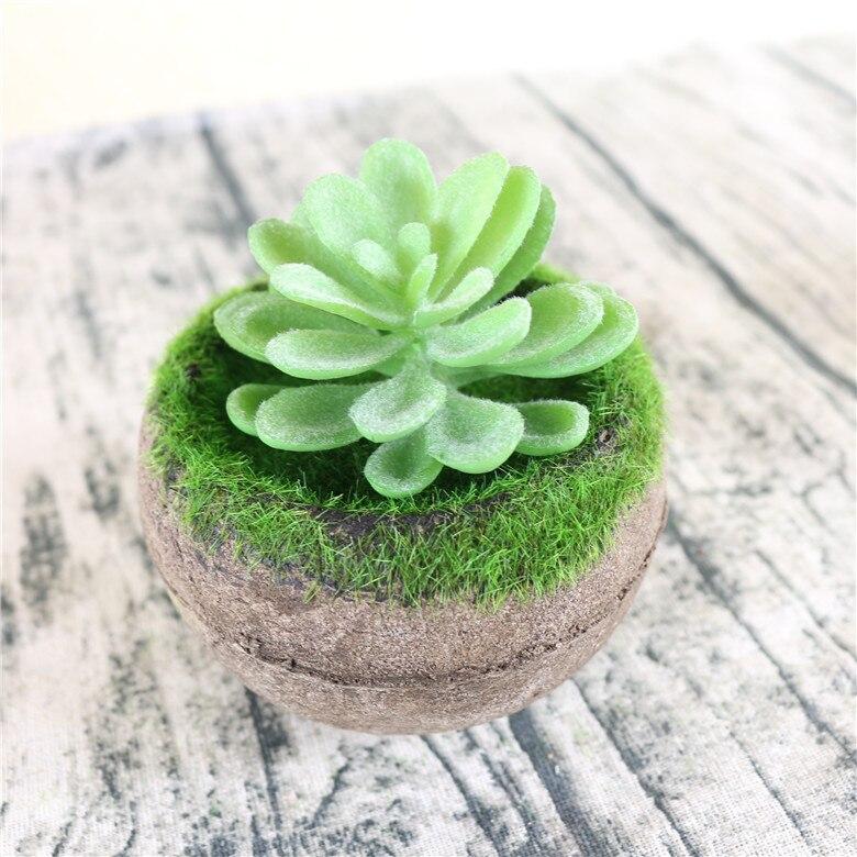 Hochwertige Mini 1 Stücke Grün Suculentas Artificiais Pflanze Künstliche  Blätter Gefälschte Pflanzen Künstliche Sukkulenten Haus Garten