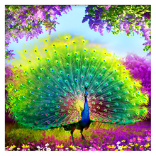 5D Diy full square diamond peacock in the garden home decor embroidery  painting Cross stitch Mosaic