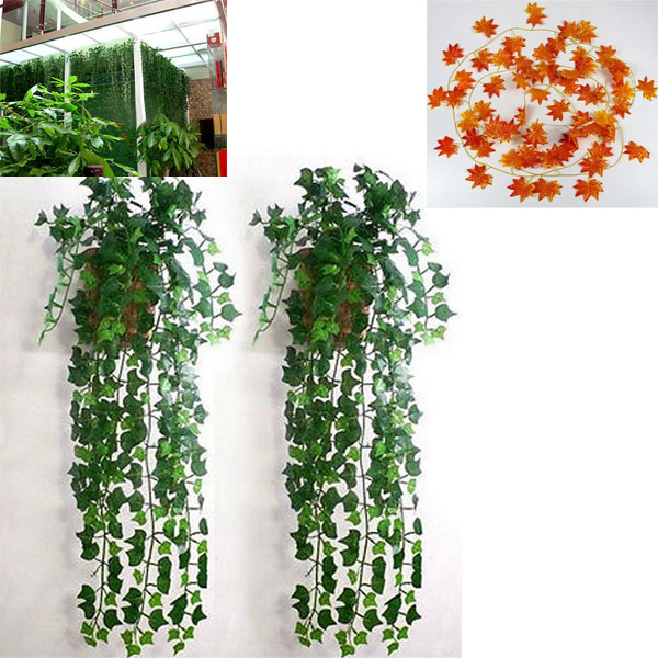 top 8 most por red vine plant ideas and get free ... Red Vining Houseplants on design red, pots red, flowers red, cactus red, nature red, peppers red, ornamental grasses red, mums red, berries red, orchids red, animals red,