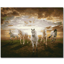 WEEN White Horse Pentium DIY painting by numbers kit on canvas,Paint with frame,  Home wall art picture 40X50cm