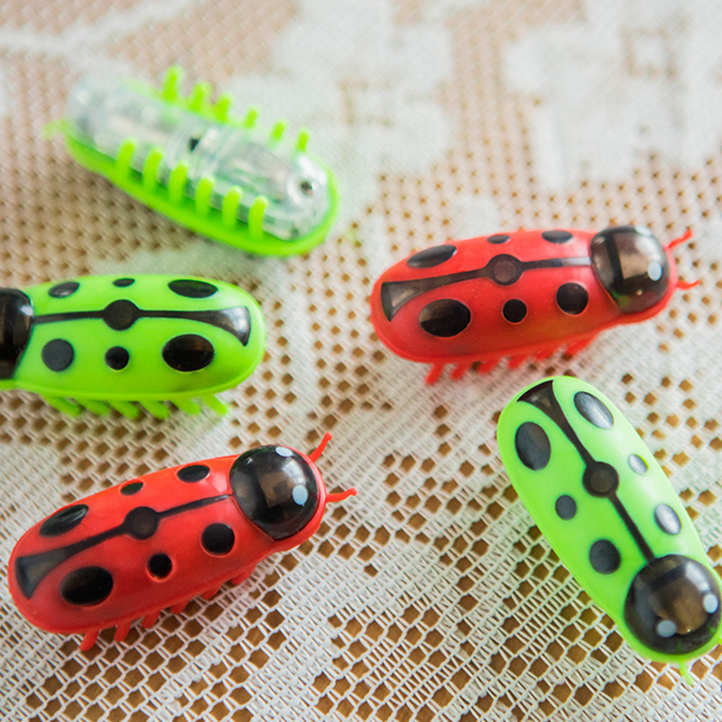 Cat bug toy Cat toy