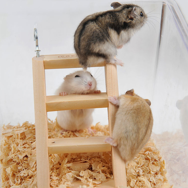 1pc 15*7*2cm Hamster - Rabbit Hanging Toy Ladder with Hook - Fun For Rats - Mice - Gerbils  1