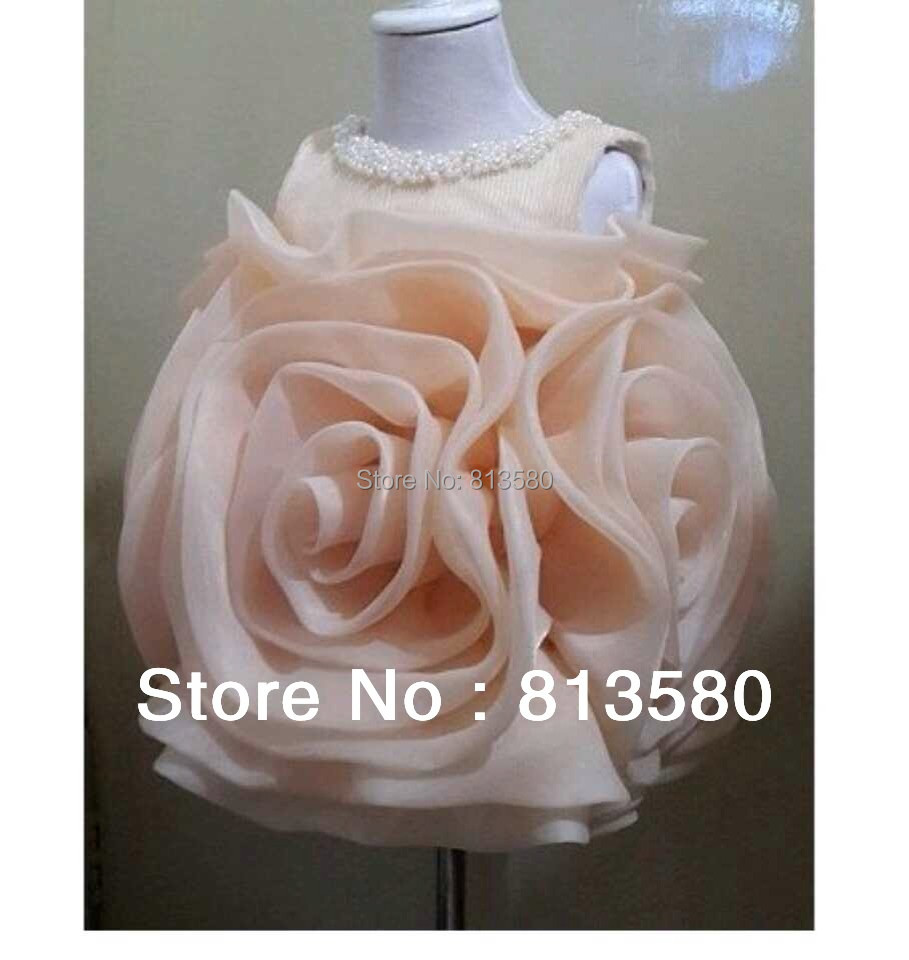 Lovely Jewel Collar Pearls Rose Flower Organza Puffy Toddler Pageant
