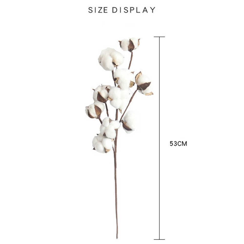 10 cabezas flores de algodón secas naturales plantas artificiales tallo de algodón rama Floral boda fiesta decoración flores falsas hogar Deco