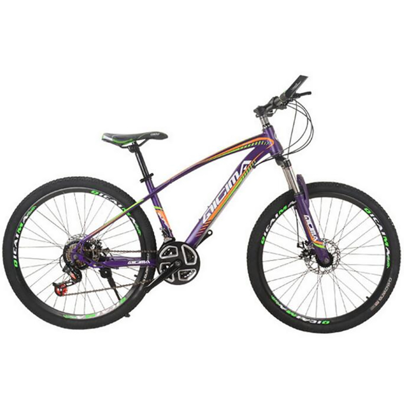 Sales Promotion 26 Inch High Carbon Steel 21 Speed Double Disc Brake Exercise Cycling Factory Mountain Bike