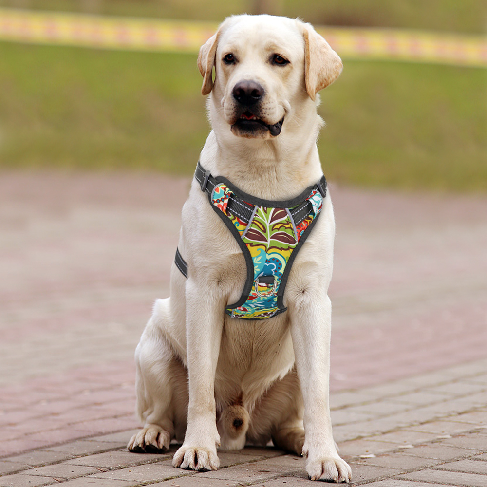 Adjustable Printed Reflective Vest Harness For Small Medium Large Dogs Dog Harness