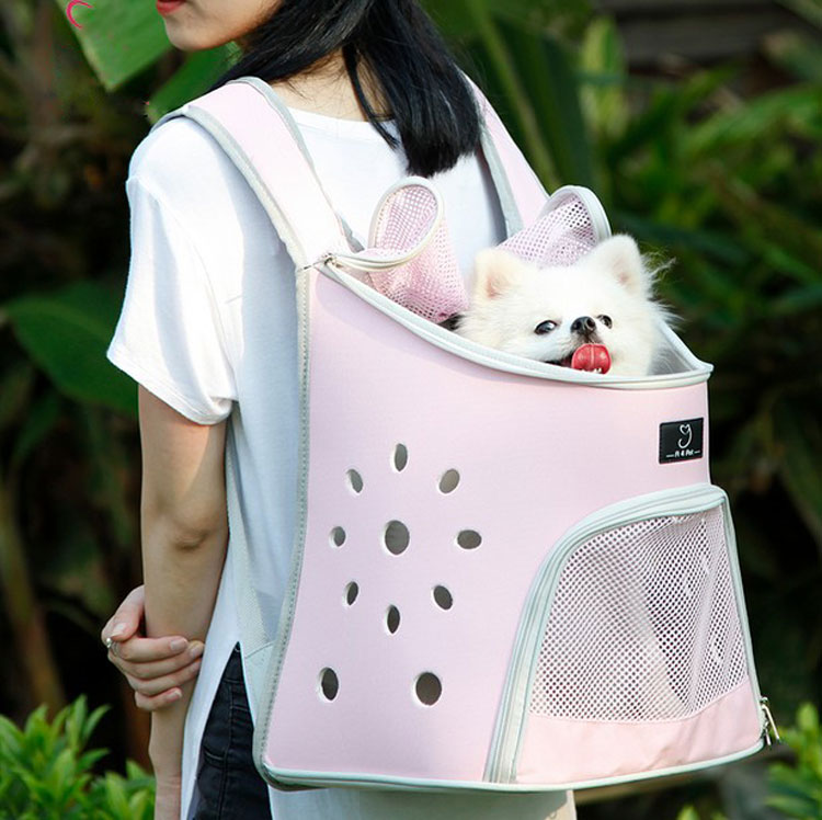 Pet Carrier Shoulders Dog Cat Travel Bag Mesh Backpack Head out Design Travel Adjustable Shoulder Strap Pink Blue