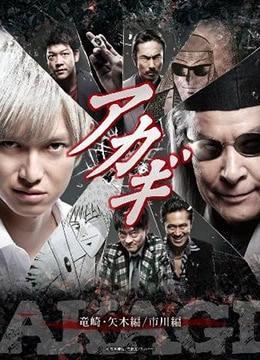 《斗牌传说 第二季》2017年日本剧情电视剧在线观看