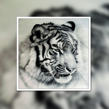 Diamond painting full  square diamond diy embroidery tiger living room bedroom manufacturer directly