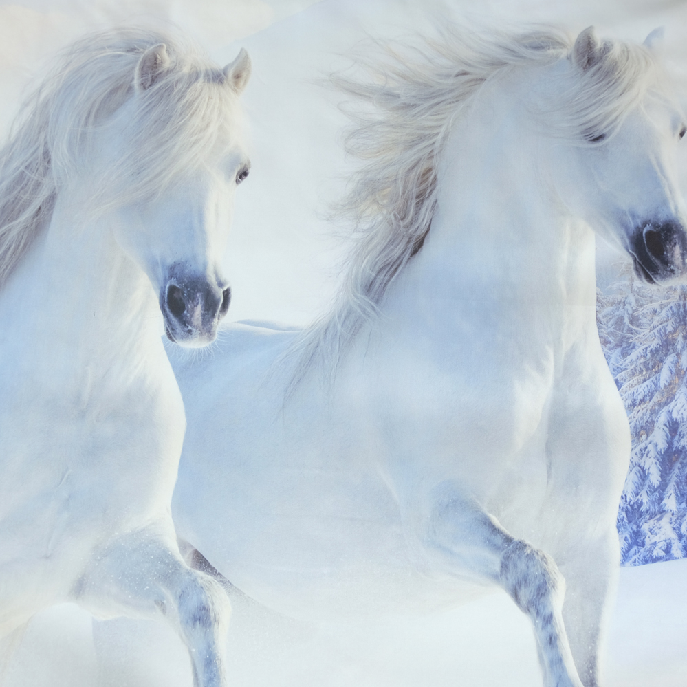Jf 218 4pcs Luxury Beautiful White Horses Running In Snow Filed