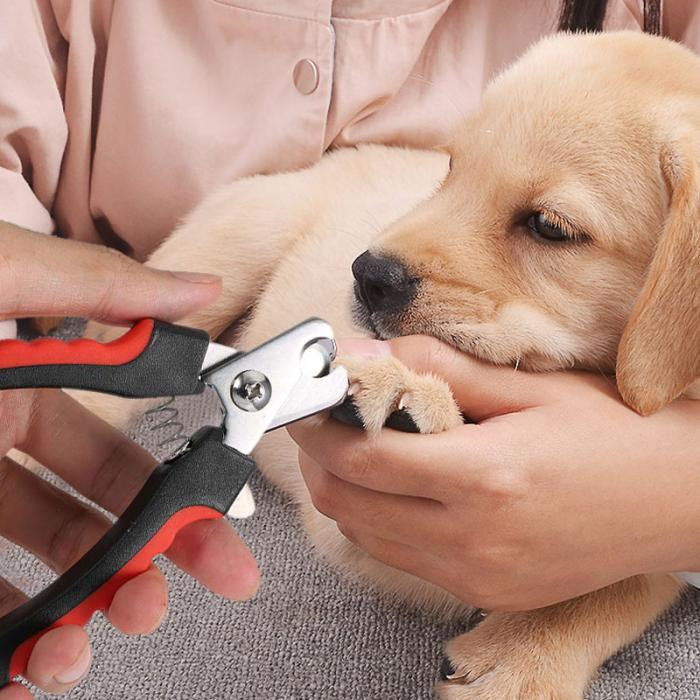 Portable Dog Cat Nail Clipper + File Kit Stainless Steel Toe Care ...
