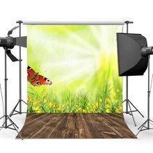 Fondo de naturaleza primavera mariposa flores frescas hierba verde borroso papel pintado campo madera piso fotografía fondo