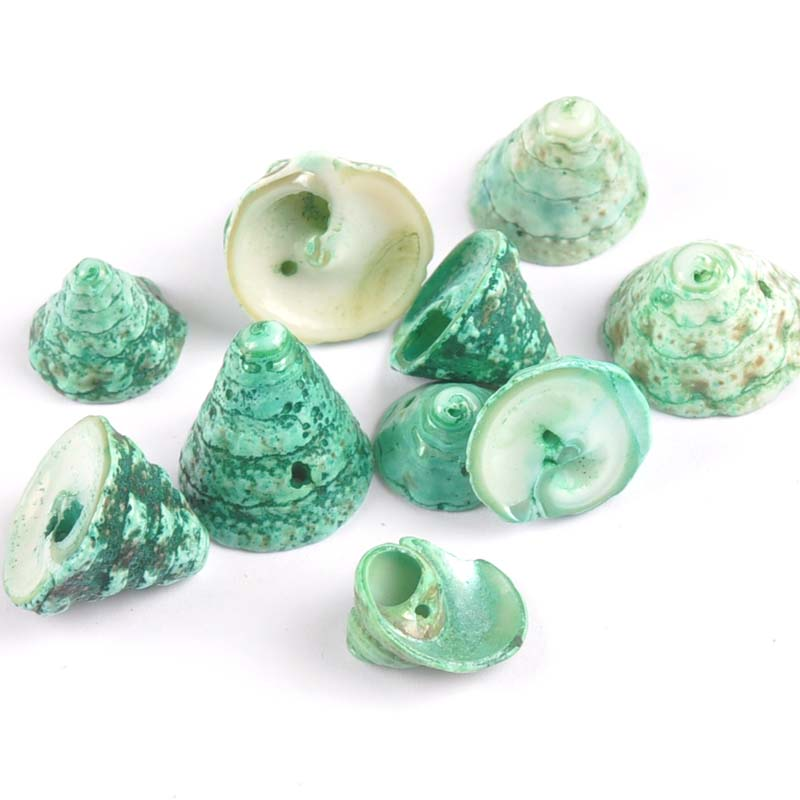 16-22mm Dyeing Green Natural Spiral Seashell Scrapbook Craft One Hole For Home Decoration DIY 10pcs TR0130