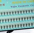 Falso falso extensiones de pestañas de visón D 6 Raíces 6D-5 0.07C pestañas Rizo 8-13mm al por mayor 3D 005