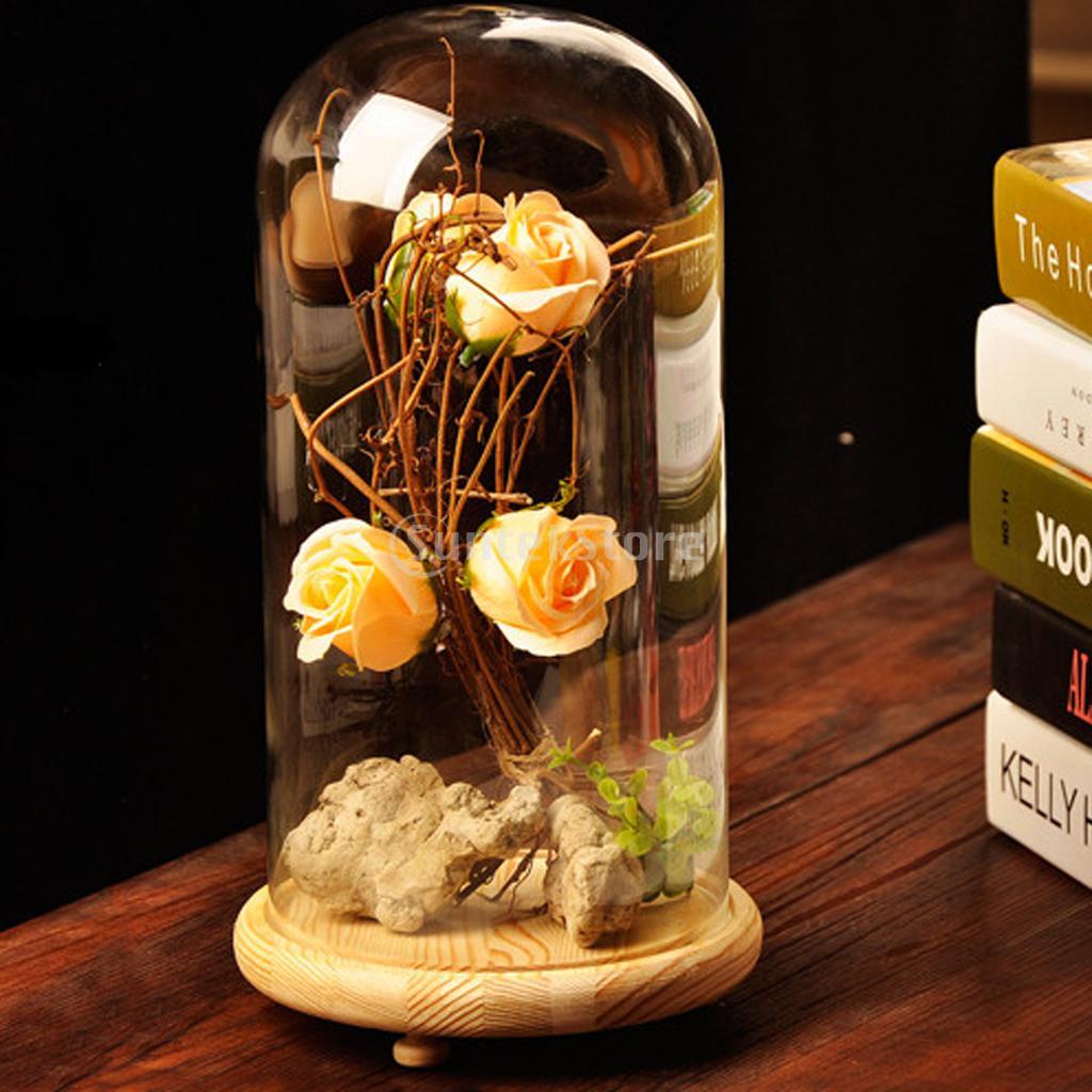 Impeccable Tray Plant Flower Decor Glass Dome Home Decor Glass Dome Decorating Ideas 2 X Glass Cover Landscape Vase Container Dome