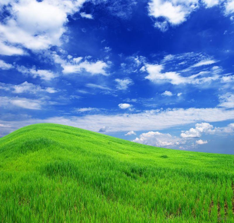 5*7ft backgrounds for photo studio,nature scenic green backdrop,fondos de estudio fotografia,vinyl backdrops for photography 918