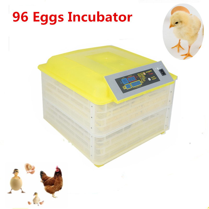 Mini small eggs automatic electronic poultry incubator for chicken duck cheap  industrial incubator for sale incubator automatic parts automatic controller for sale xm 18